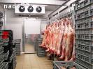 Морозильная камера для мяса -18С
